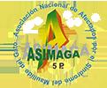 Asimaga
